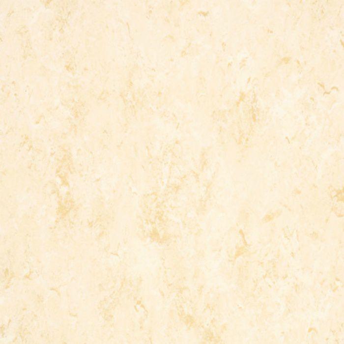 FPT2050 コンポジションビニル床タイルKT フェイソールプルス 3mm厚