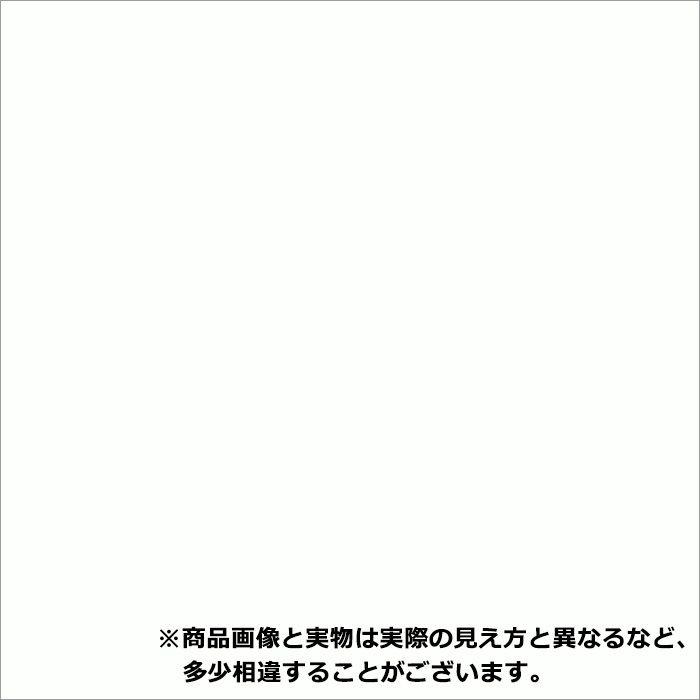 即納ポストフォームカウンター NJA6000G3D ホワイト 31mm厚 450mm×1810mm 一般・ワークトップ 丸エッジ 1枚