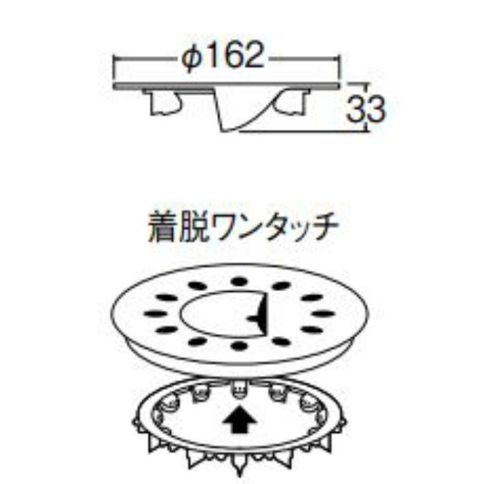 PH6532F-7S-LG ヌメリストップ グリーン