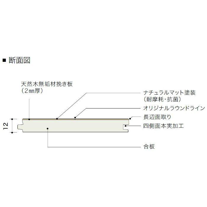 PDTASKJ48 ライブナチュラル プレミアム nendo collection/stream slim ブラックチェリー【地域限定】