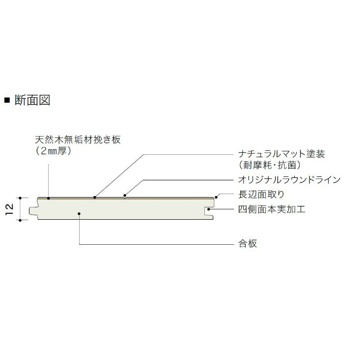 PDTAWKJ02 ライブナチュラル プレミアム nendo collection/amida wide ブラックウォルナット【地域限定】