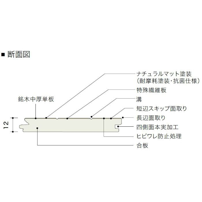 HVN20005MP ライブナチュラルプラス オーク 2Pタイプ303mm【地域限定】