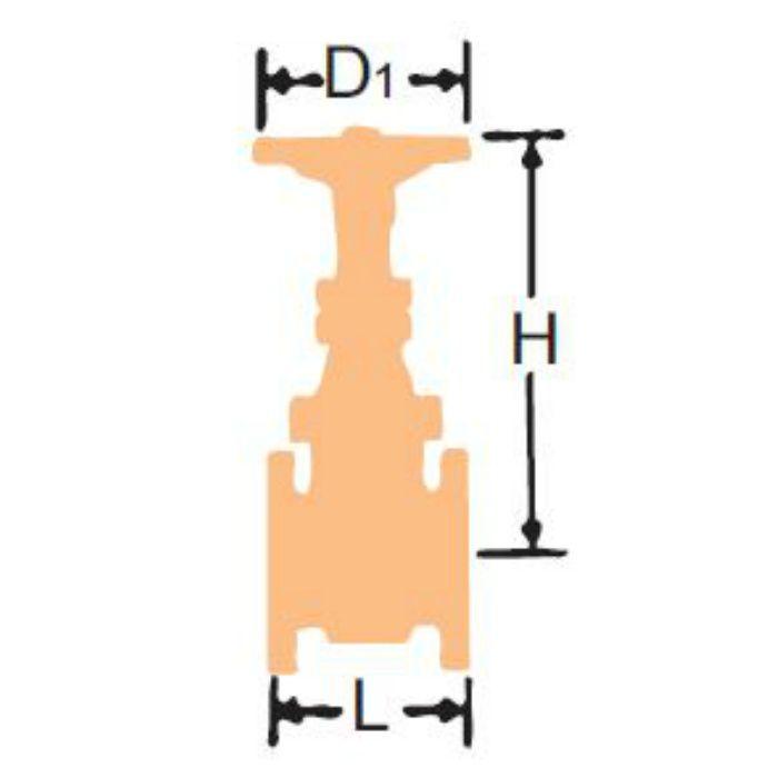 10DSR-N FCD-S ゲート弁【ネジ込・CR13】 32A