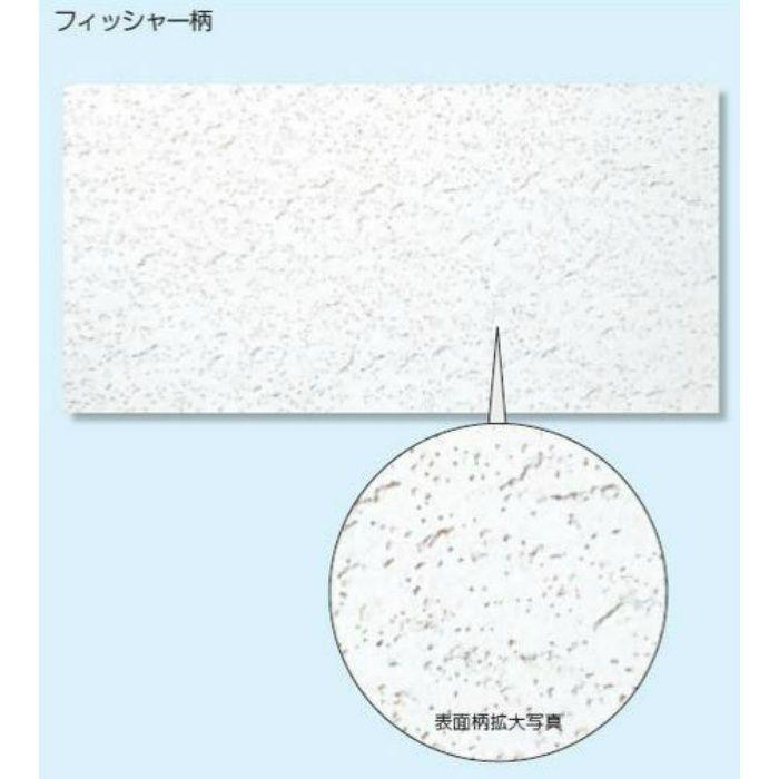ソーラトン 平板 フィッシャー柄 12mm <関東限定>