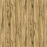 FW-791 ダイノックフィルム ファインウッド 木目 黒柿 板柾